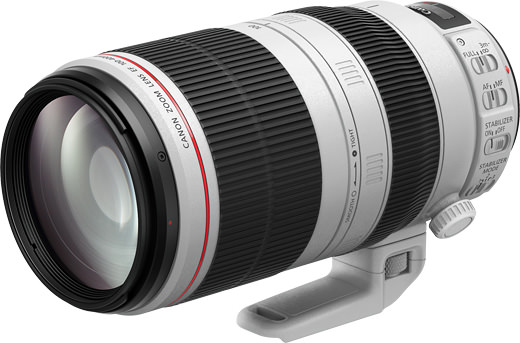 Canon EF100-400mm F4.5-5.6L IS II USM